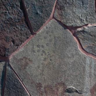 Baja-Tinto-Flagstone