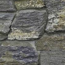 veneer-Rustic-Ledge.jpg